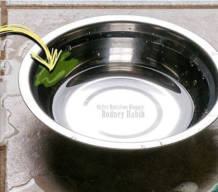 cleaning pet water bowls