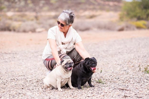 Self care when you have older pets